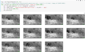 screenshot-www-kaggle-com-sublate-iwildcam-2020-overviewing-for-start-edit-1589355327055